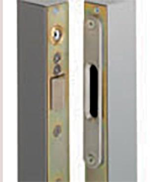 Gâches électriques - Door Systemes